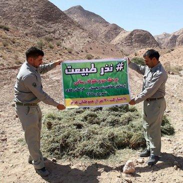 هفتاد نفر طی فراخوانی تأمین علوفه برای حیات وحش منطقه بجستان خراسان را به عهده گرفته اند