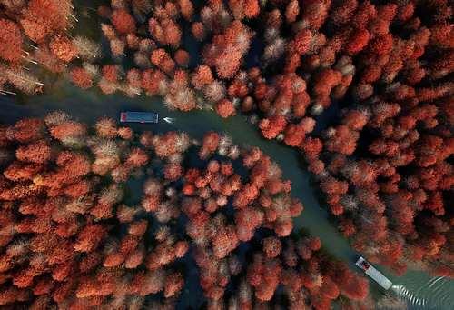 عکسی هوایی از پارک جنگلی گینگلونگ وان در چین