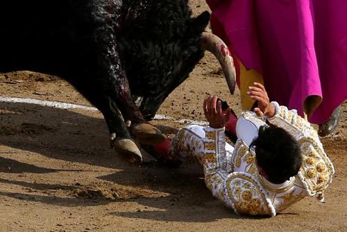 زخمی شدن یک گاوباز ونزوئلایی در جریان یک نمایش گاوبازی در شهر لیما پرو