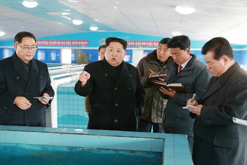 بازدید رهبر کره شمالی از یک مزرعه پرورش ماهی در سانچئون کره شمالی/ عکس: خبرگزاری یونهاپ کره جنوبی
