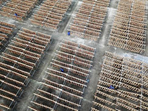کارخانه تولید ژامبون – چین