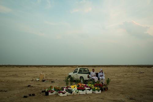 گل فروشی در حاشیه بزرگراهی در مسیر فرودگاه بین المللی ملک فهد