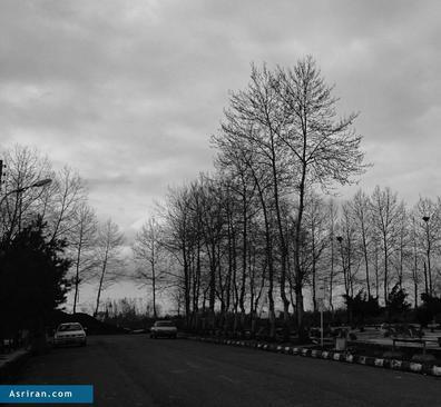 باغ رضوان رشت- ثبت: سارا ملک پور