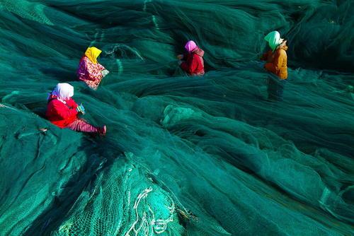 زنان در حال ترمیم تورهای بزرگ ماهیگیری- چین