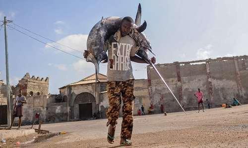 صیاد سومالیایی در حال حمل اره ماهی صید شده – موگادیشو/ عکس: خبرگزاری فرانسه