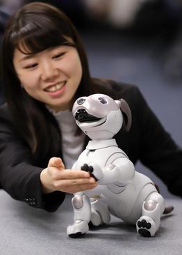 رونمایی از روبات سگ جدید ساخت شرکت سونی ژاپن در توکیو