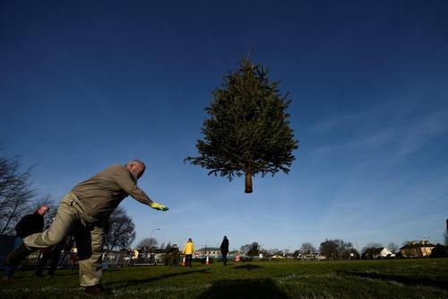 مسابقه پرتاب کاجهای کریسمس – ایرلند