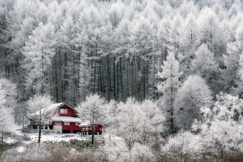 زیباییهای کشور آفتاب تابان در زمستان (عکس)