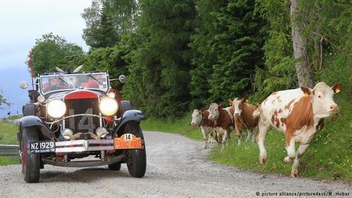 داووس همچنین سالانه میزبان رالی خودروهای کلاسیک نیز هست.