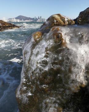 یخزدگی آب دریا روی سنگ در ساحل شهربندری بوسان کره جنوبی