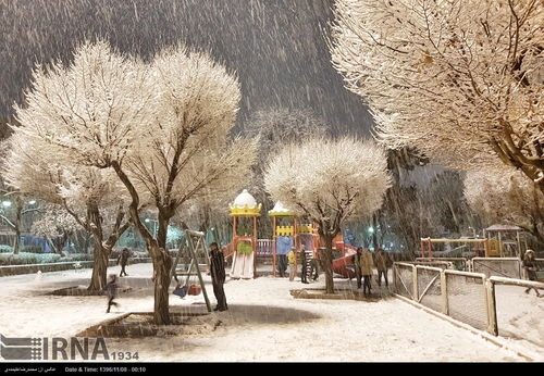 بارش برف تهران را سپیدپوش کرد (عکس)