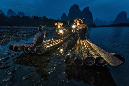 دوماهیگیر و مرغابی آموزشدیده شان در دریاچه ای در گویلین چین- عکس روز وب سایت