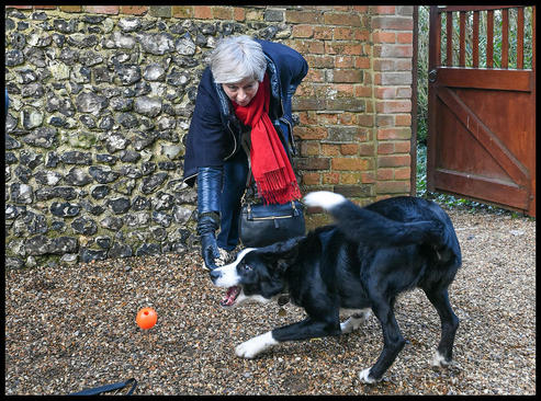 بازی نخستوزیر بریتانیا با سگش پس از حضور در مراسم آخر هفته کلیسا- لندن