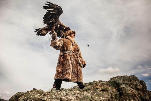 عقاب شکاری – مغولستان/ عکس روز وب سایت