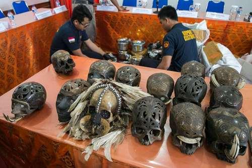 گمرک مرزبانی جزیره بالی اندونزی محموله ای قاچاق از دهها جمجمه انسانی به مقصد هلند را کشف و ضبط کرد
