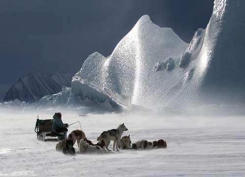 یک شکارچی در گرینلند- عکس: شینهوا
