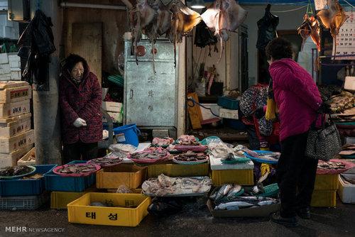 بازار سنتی شهر پیونگ چانگ (عکس)