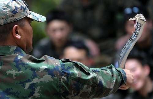آموزش نحوه زنده ماندن در جنگل به کماندوهای یگانهای ویژه ارتش تایلند/عکس: رویترز