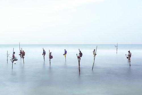 ماهیگیری در سواحل سریلانکا- عکس روز وب سایت