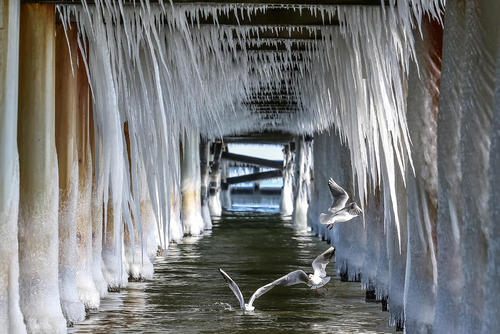 سرما و یخزدگی در لهستان
