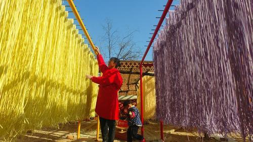 کارگاه تولید نودل سبزیجات – چین