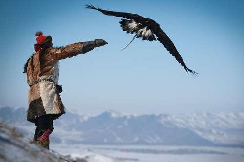 جشنواره گرامیداشت ششهزارمین سالگرد سنت شکارچیان عقاب در اولانباتور مغولستان