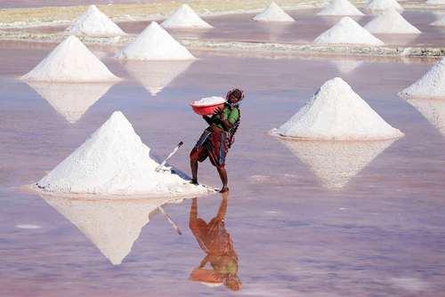 معدن نمک در راجستان هند- عکس: خبرگزاری فرانسه