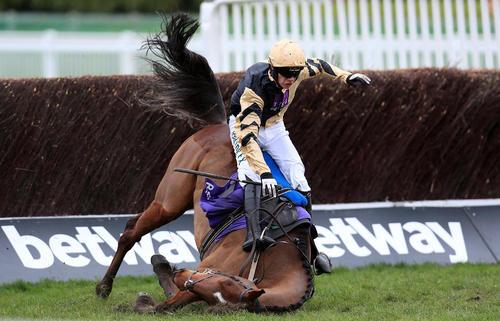 زمین خوردن اسب در جریان جشنواره اسب سواری- بریتانیا