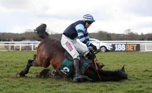 زمین خوردن یک اسب در جریان مسابقات اسب سواری- بریتانیا