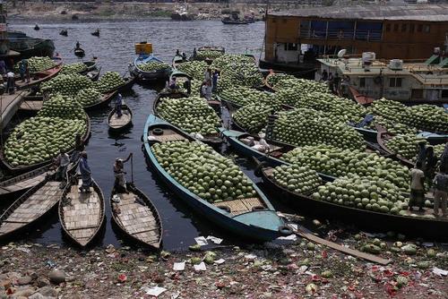 هندوانههای برداشت شده آماده تخلیه از قایقهای کوچک چوبی در کرانه رود