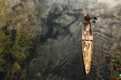 قایقرانی در دریاچه ای در سرینگر کشمیر