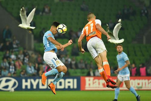 پرواز مرغان دریایی به هنگام بازی لیگ حرفهای فوتبال استرالیا در استادیوم شهر ملبورن