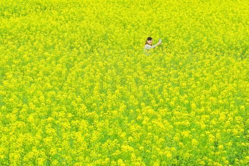 سلفی در گلزار- چین