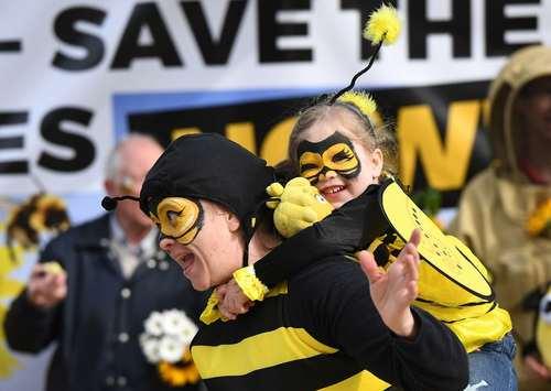 گردهمایی فعالان در مقابل ساختمان کمیسیون اروپا در شهر بروکسل برای محافظت از جمعیت زنبورها در کشورهای اروپایی و تصویب ممنوعیت کامل استفاده از آفت کشهای گیاهی