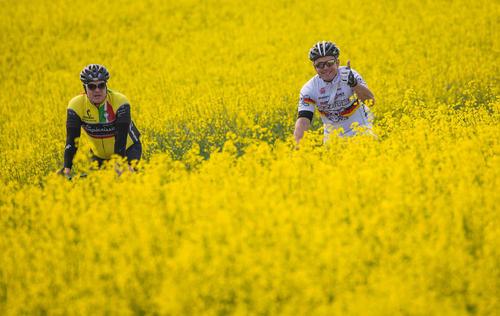 دوچرخه سواری در طبیعت بهاری / آلمان- عکس: حبرگزاری آلمان