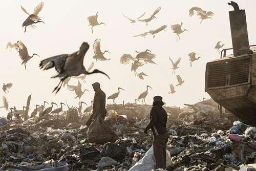 زبالهدانی شهر ژوهانسبورگ آفریقای جنوبی
