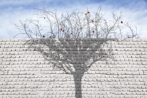 عکس white wall از میلاد اسلامی زاده