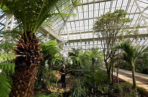 آبیاری گل و گیاه در باغ