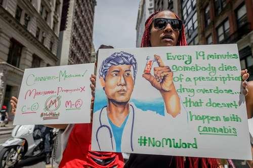 تظاهرات سالانه حامیان قانونی شدن مصرف ماریجوانا و حشیش در شهر نیویورک آمریکا