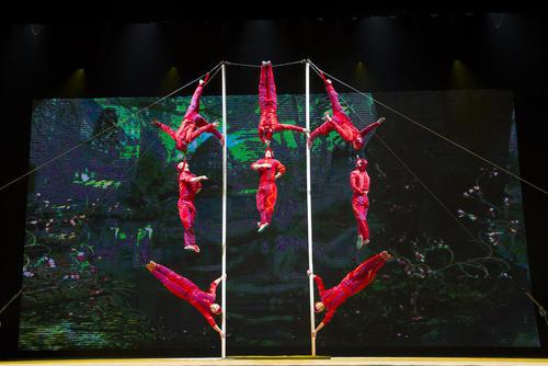 نمایش آکروباتیک – چین