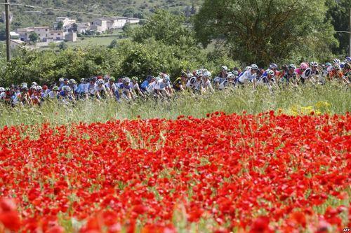 مسابقات دوچرخهسواری تور ایتالیا