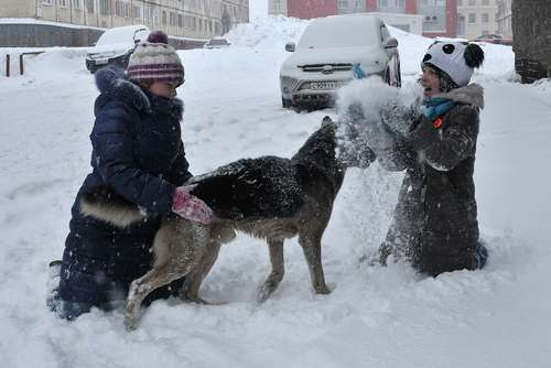 بارش برف بهاری در شهر