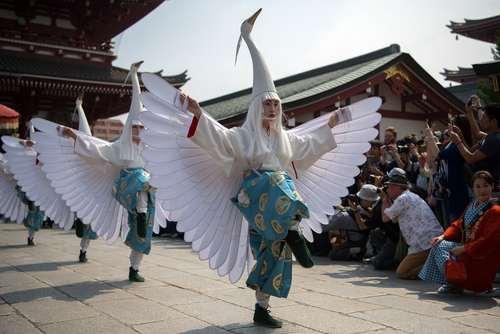 جشنواره سانجا در توکیو ژاپن