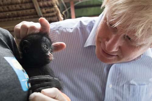 بازدید وزیر امور خارجه بریتانیا از یک مرکز نجات حیوانات در پرو
