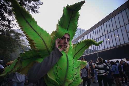 گردهمایی طرفداران قانونی شدن ماده مخدر