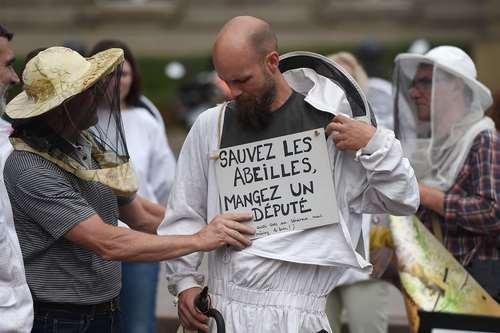 اعتراض زنبورداران در شهر استراسبورگ فرانسه
