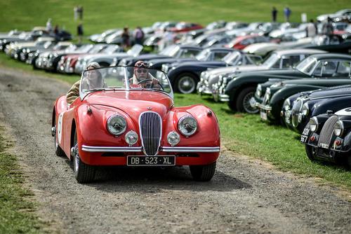 نمایشگاه خودروهای کلاسیک جگوار/ بریتانیا