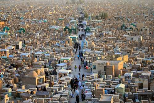 گورستان شهر نجف عراق/ رویترز