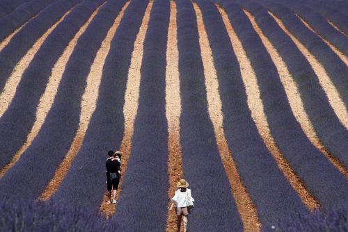 قدم زدن یک خانواده در زمین