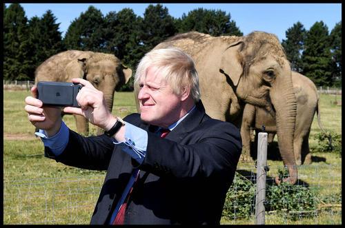 سلفی گرفتن وزیر امور خارجه بریتانیا با فیلهای یک باغ وحش در